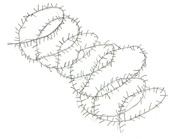 20190902140115_Zeichnung.Stacheldraht_690x0-aspect-wr.png